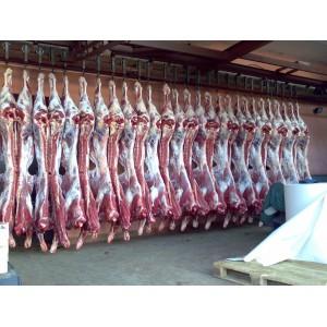 Где закупать мясо оптом?